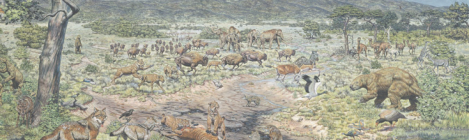 Painting of an ice age landscape at La Brea tar pits, California. Lions, sloths, deer, bison, mammoths, and other animals wander an open plain, with some lions feeding on a horse trapped in the tar.